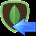 SSIS MongoDB Destination Adapter - NoSQL Connector