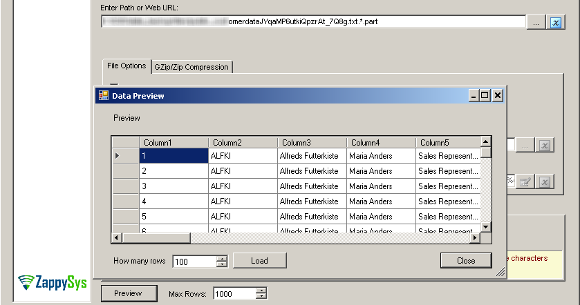 SSIS Amazon S3 JSON File Source – Design time data preview