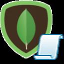 Custom SSIS Tasks - MongoDB ExecuteSQL Task
