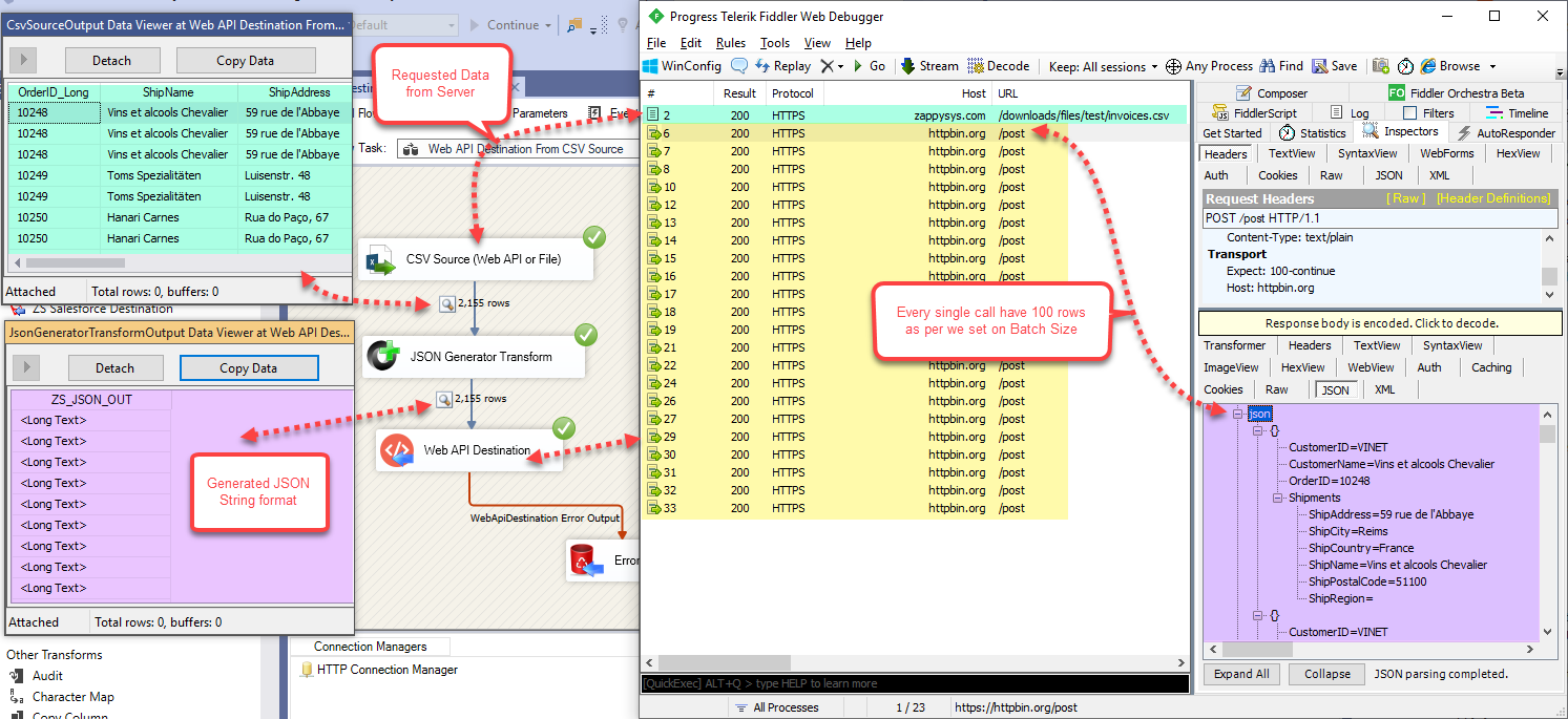 SSIS Run or Execute the Package